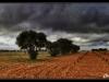 panorama_hoya_olivos_recorte_capas